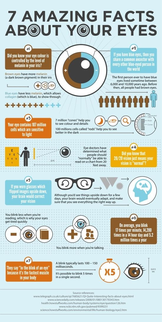 Valhalla & SAFI Optometrists Fun Facts